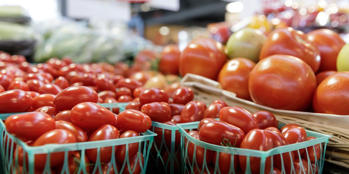 foto-tomaat
