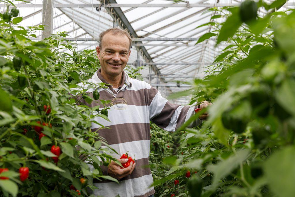 organic grower Marc van Nieuwkerk