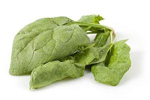 Rhino RZ - Spinach